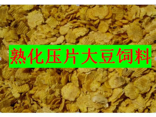 蒸汽熟化压片大豆