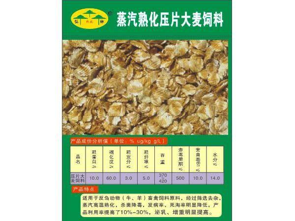蒸汽熟化压片大麦饲料