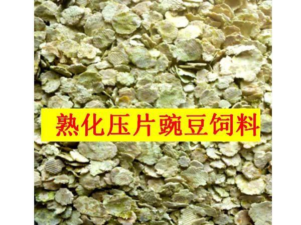 熟化压片豌豆饲料