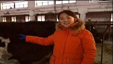 农科院对奶牛基地技术专访