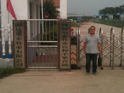 寿光泉泰牧业